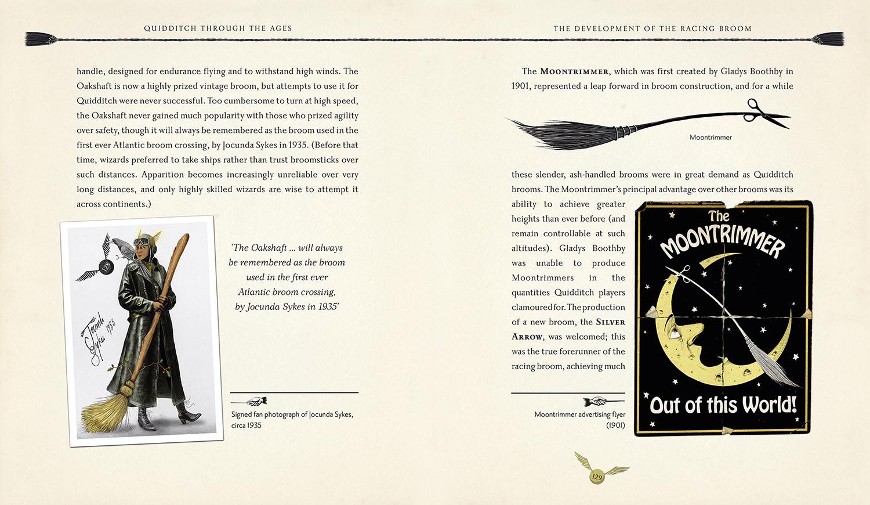 Quidditch brooms