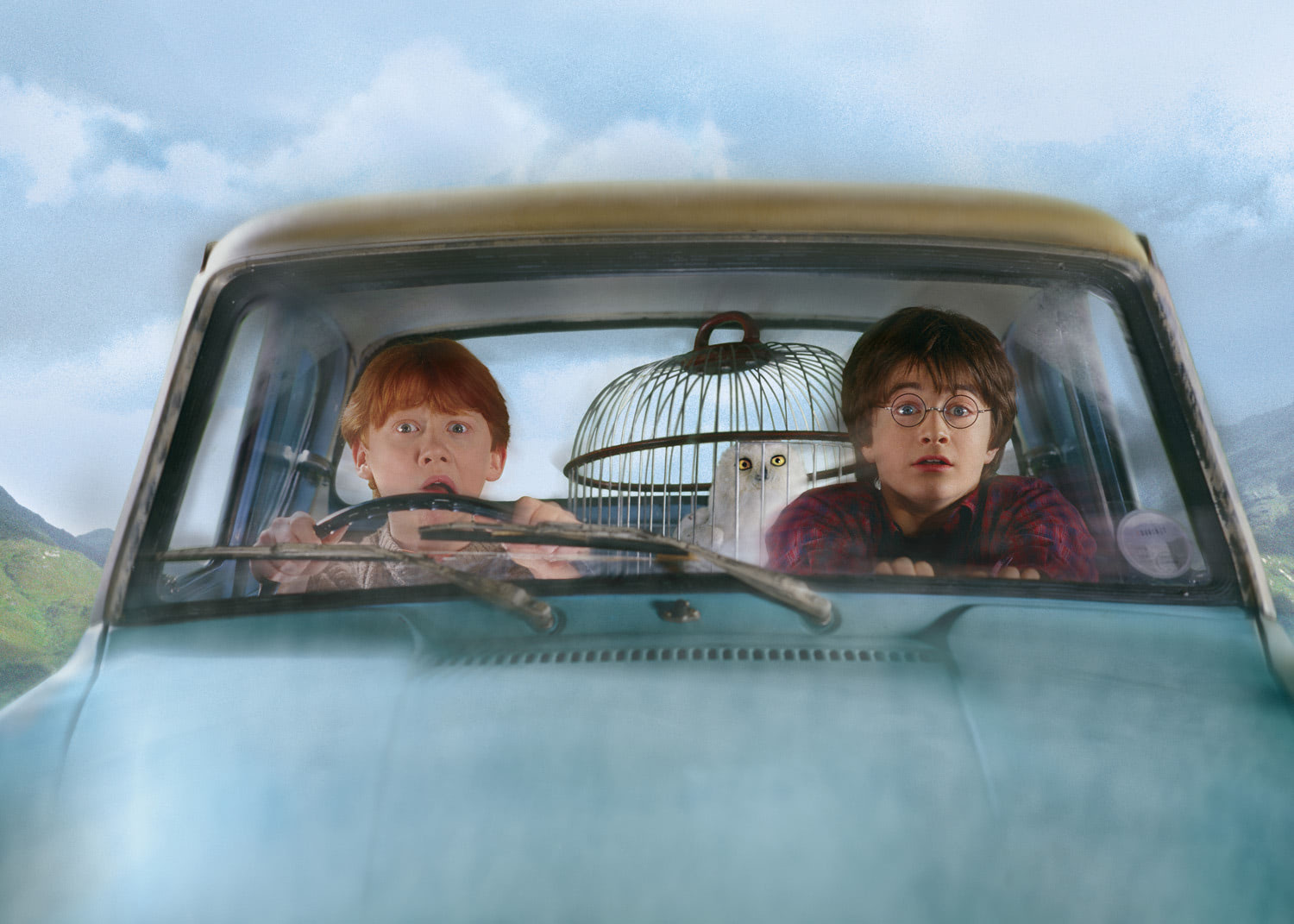 Ron and Harry in the flying car