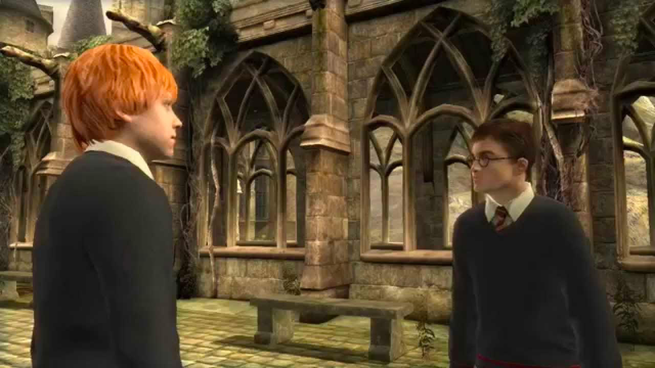 Ron and Harry (Order of the Phoenix video game)