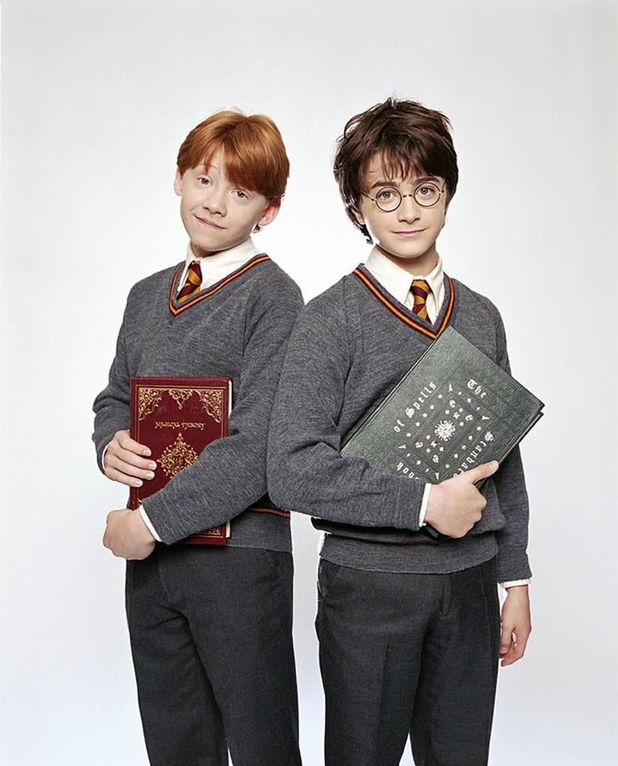 Portrait of Ron Weasley and Harry Potter