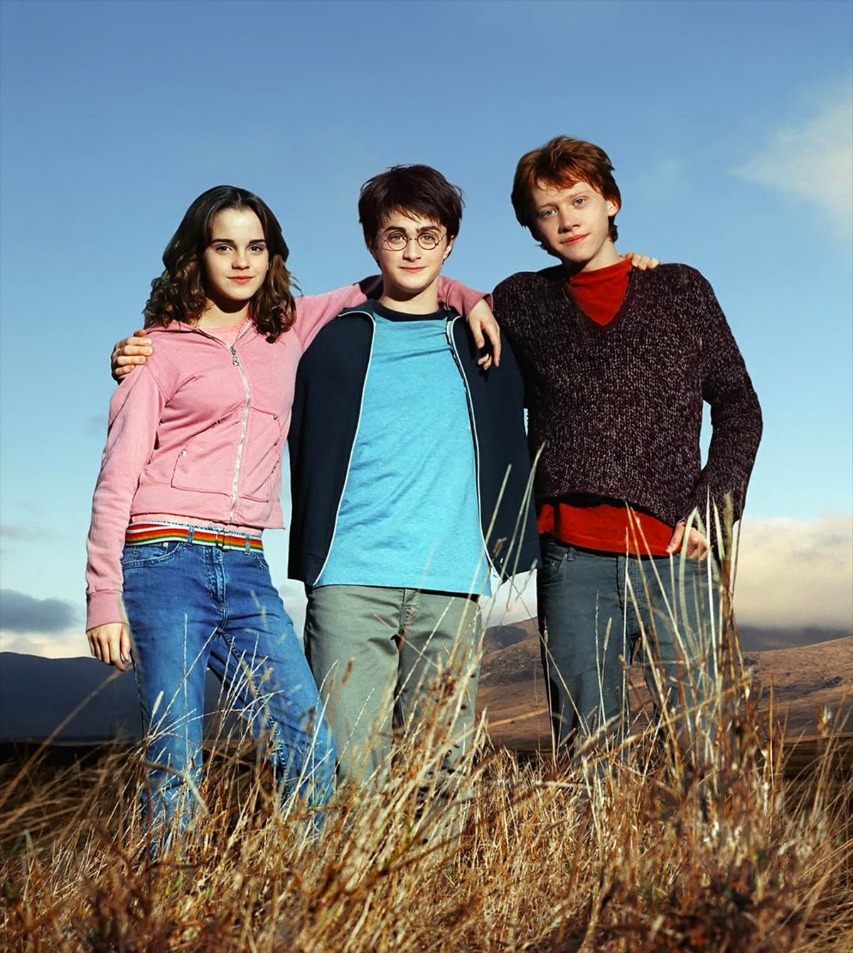 Portrait of Hermione, Harry and Ron