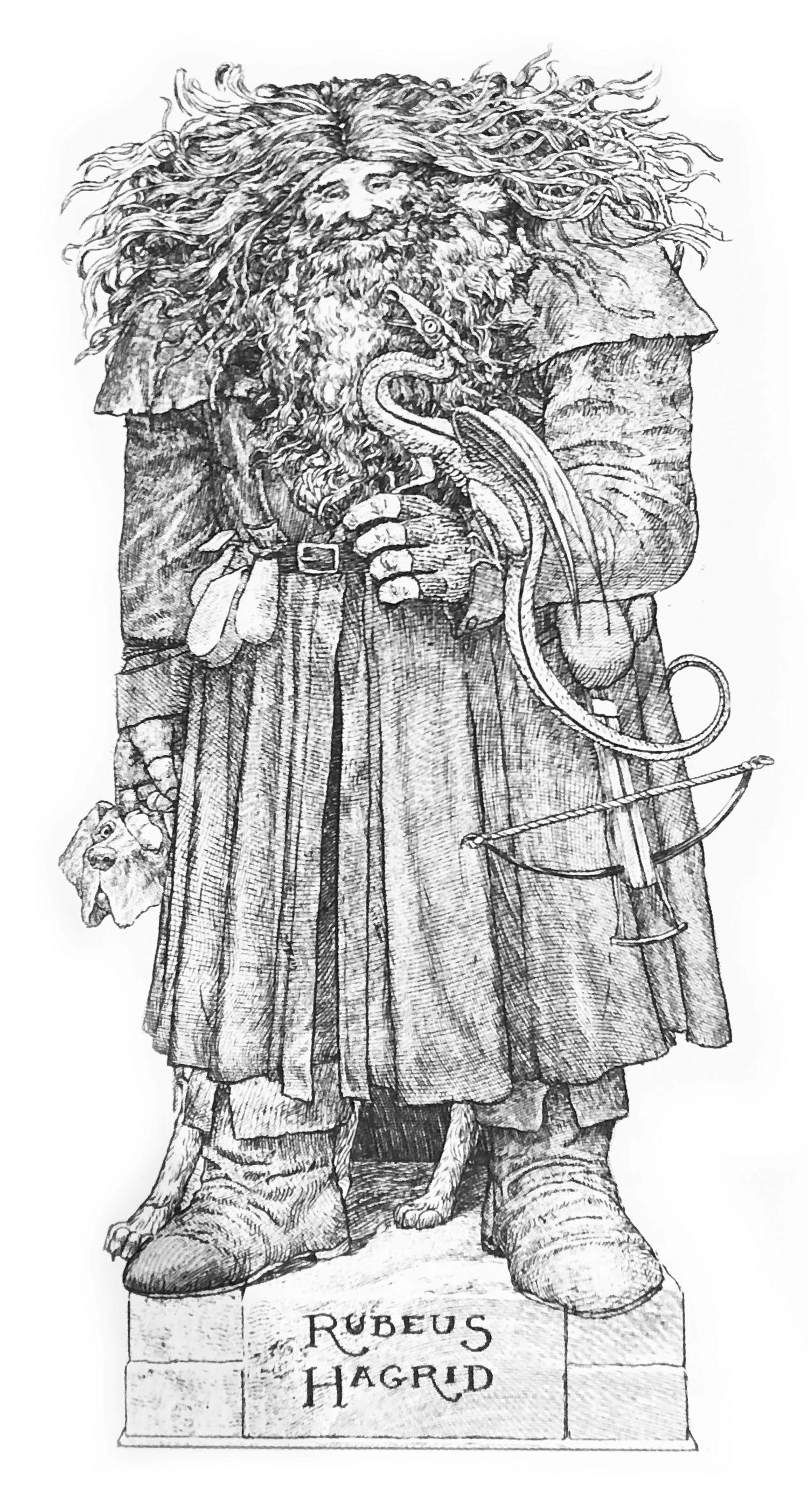 Rubeus Hagrid illustration (house editions)