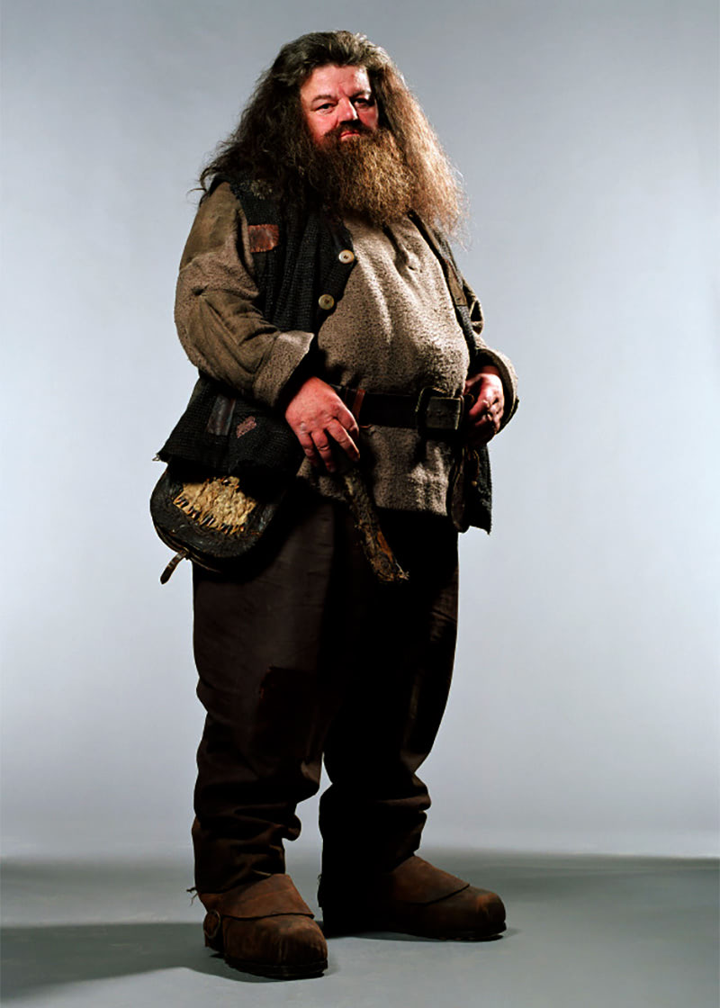 Portrait of Rubeus Hagrid