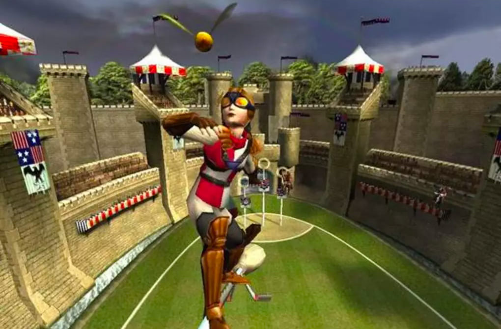 Seeker (Quidditch World Cup video game)