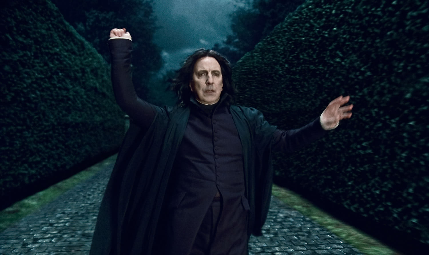 Snape at Malfoy Manor