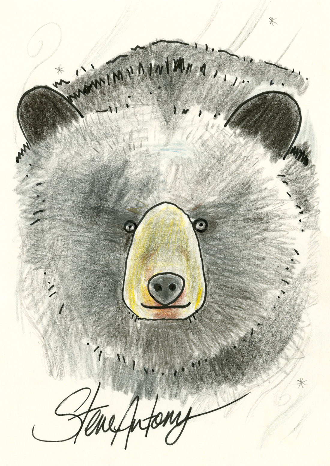 Black Bear (Steve Antony Patronus on a Postcard)