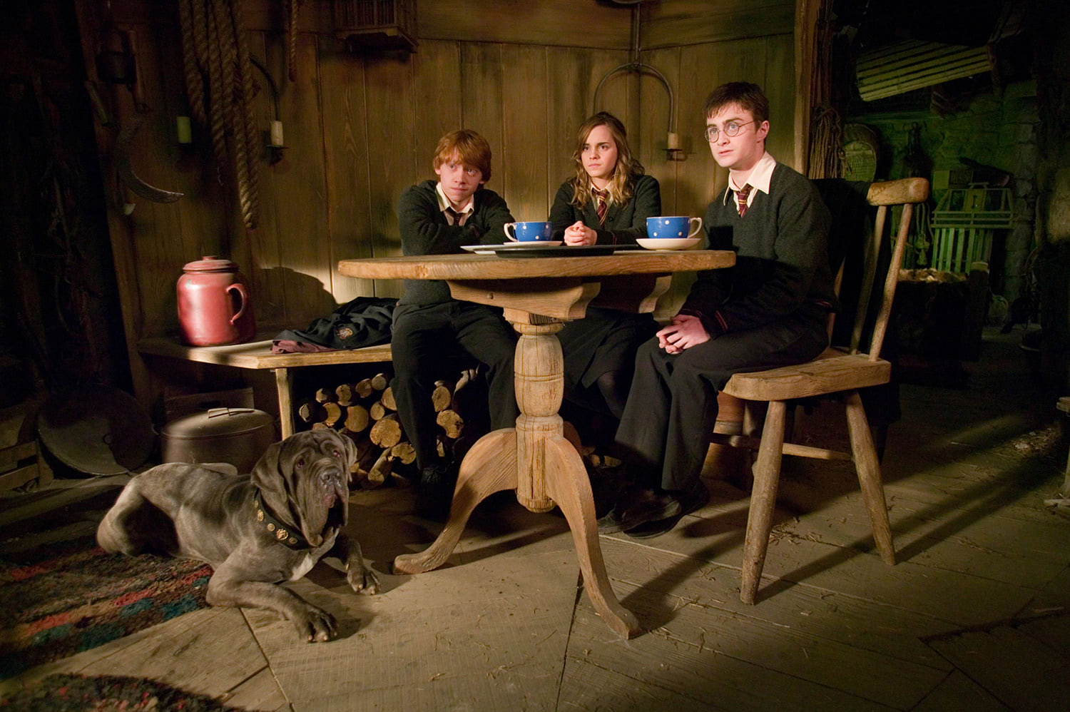Tea with Hagrid and fang
