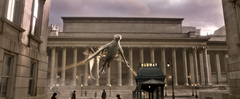Frank the Thunderbird takes flight