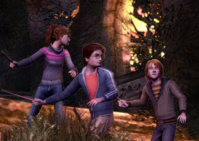 The trio (Goblet of Fire video game)