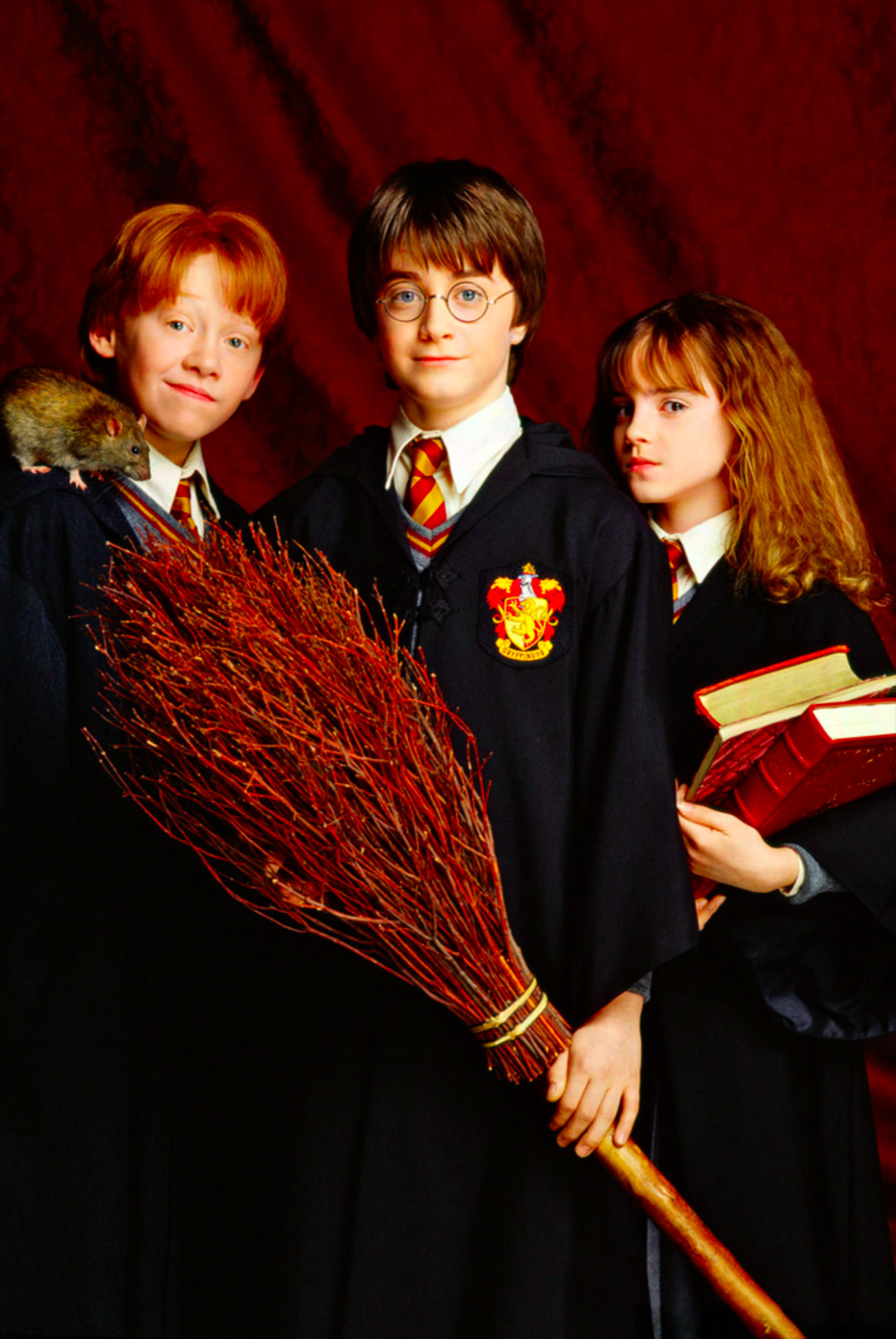 Portrait of Harry, Ron and Hermione