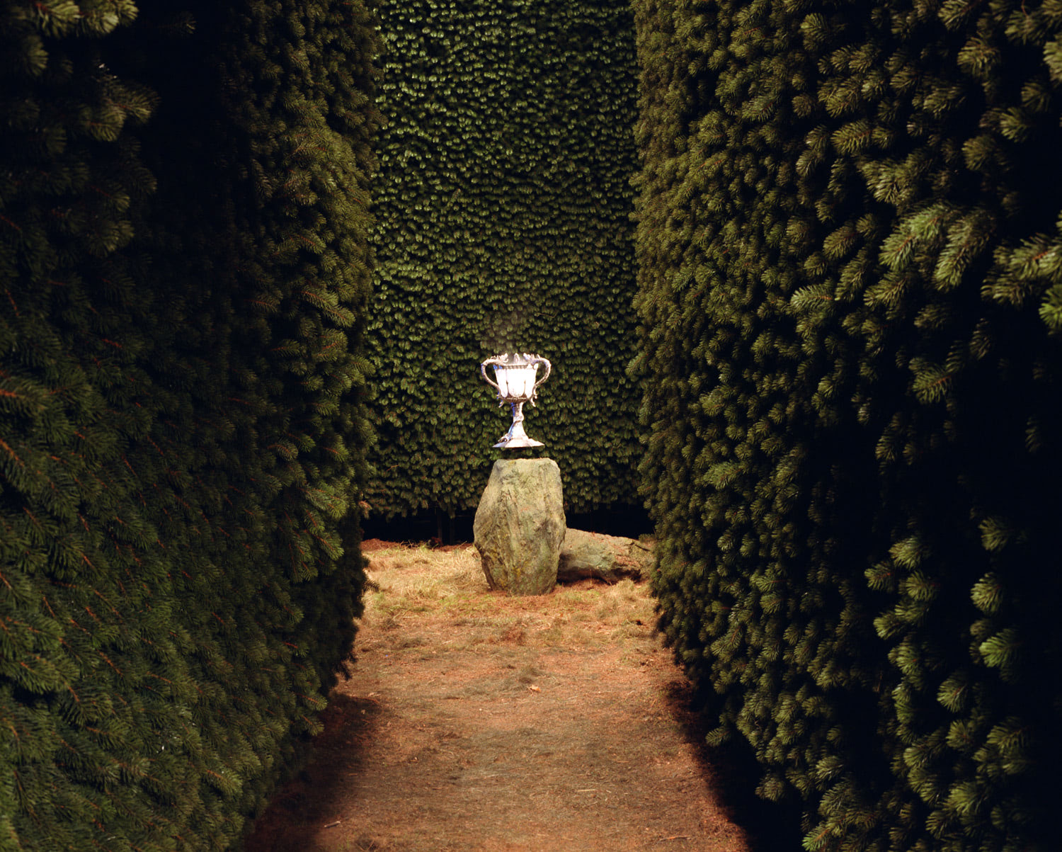 Triwizard Cup in the maze