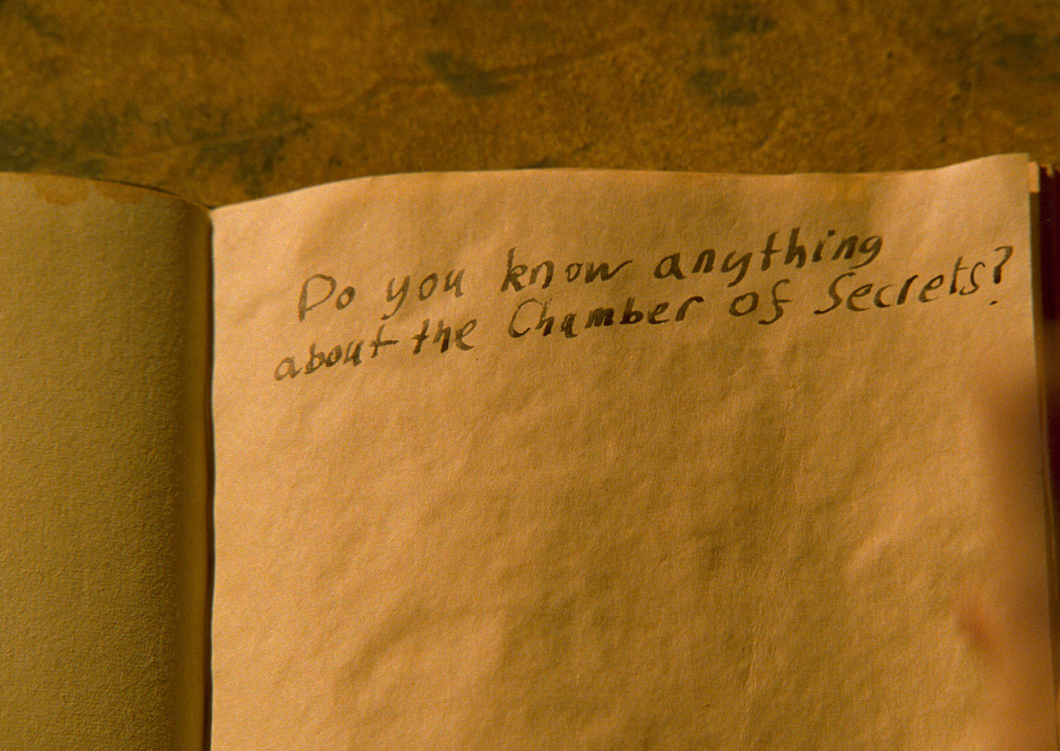 Writing in Tom Riddle's diary